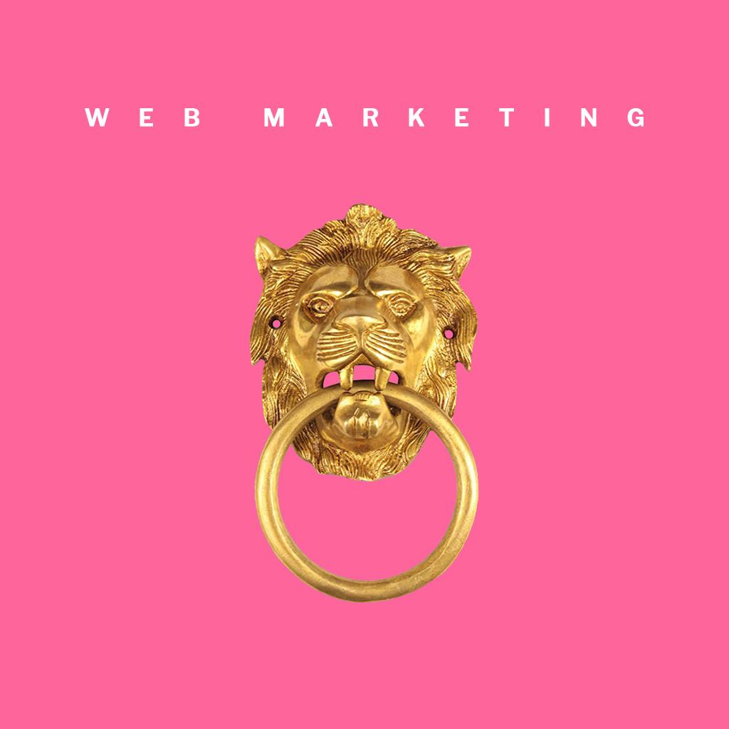 Esperto Web Marketing Torino